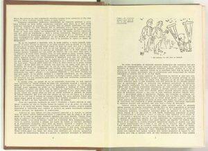 Sarcina numărul 1 a regizorului contemporan: marele spectacol cu piesa originală,autori Moni Ghelerter, Radu Penciulescu și Valentin Silvestru, Revista Teatrul, nr. 1/1961