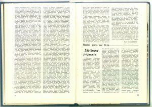 Săptămîna teatrelor de păpuși și marionete: Săptămîna pe puncte (Nr. 8 - 1989)