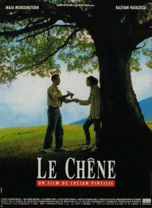 Balanța (Stejarul), 1992, Lucian Pintilie, varianta 2, sursa cinemagia.ro